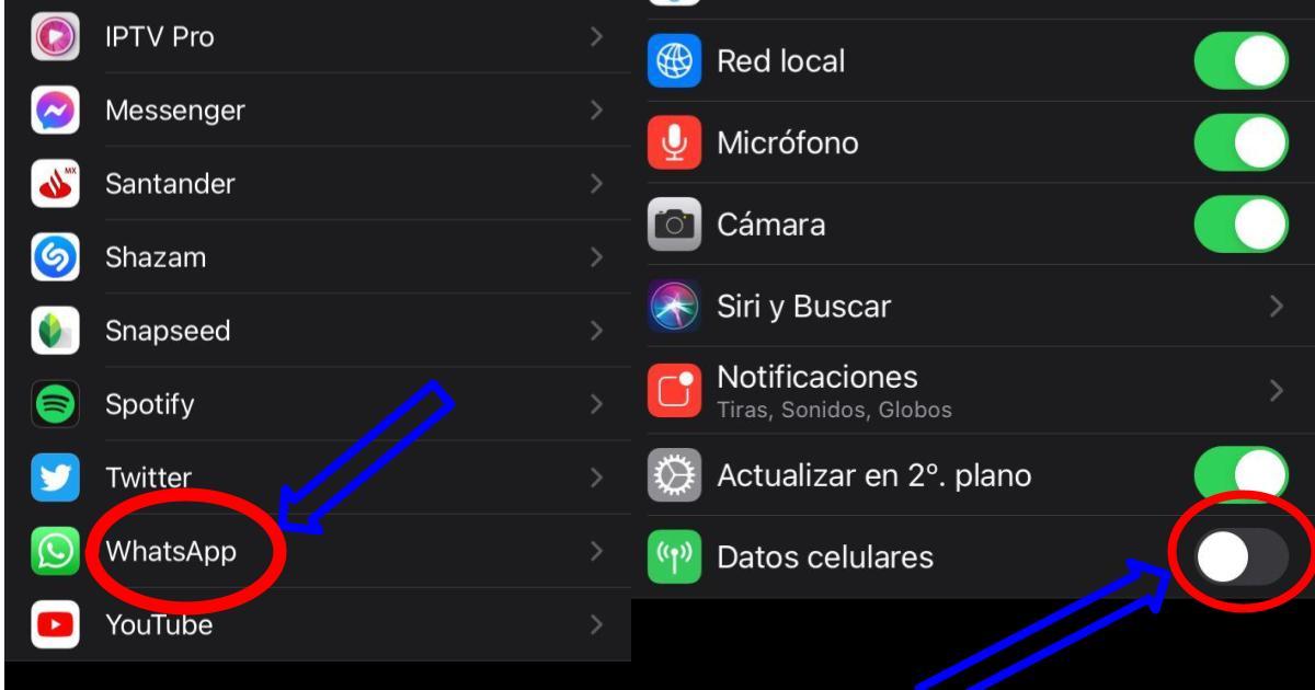 como-desconectarse-de-whatsapp-sin-dejar-de-usar-internet-en-tu-celular-iPhone