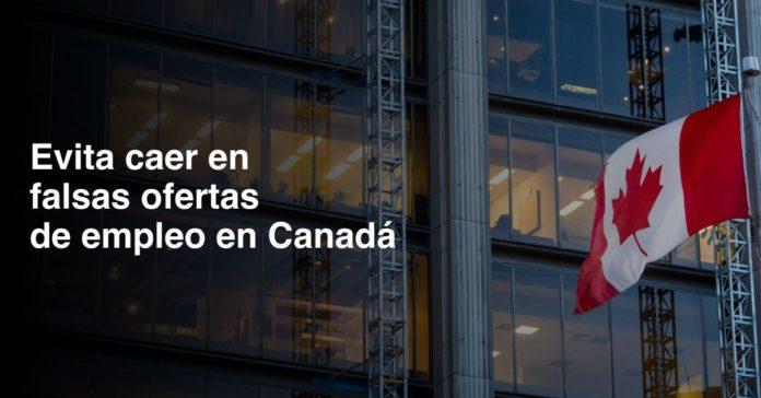 _Así engañan a mexicanos con ofertas falsas de empleo en Canadá portada