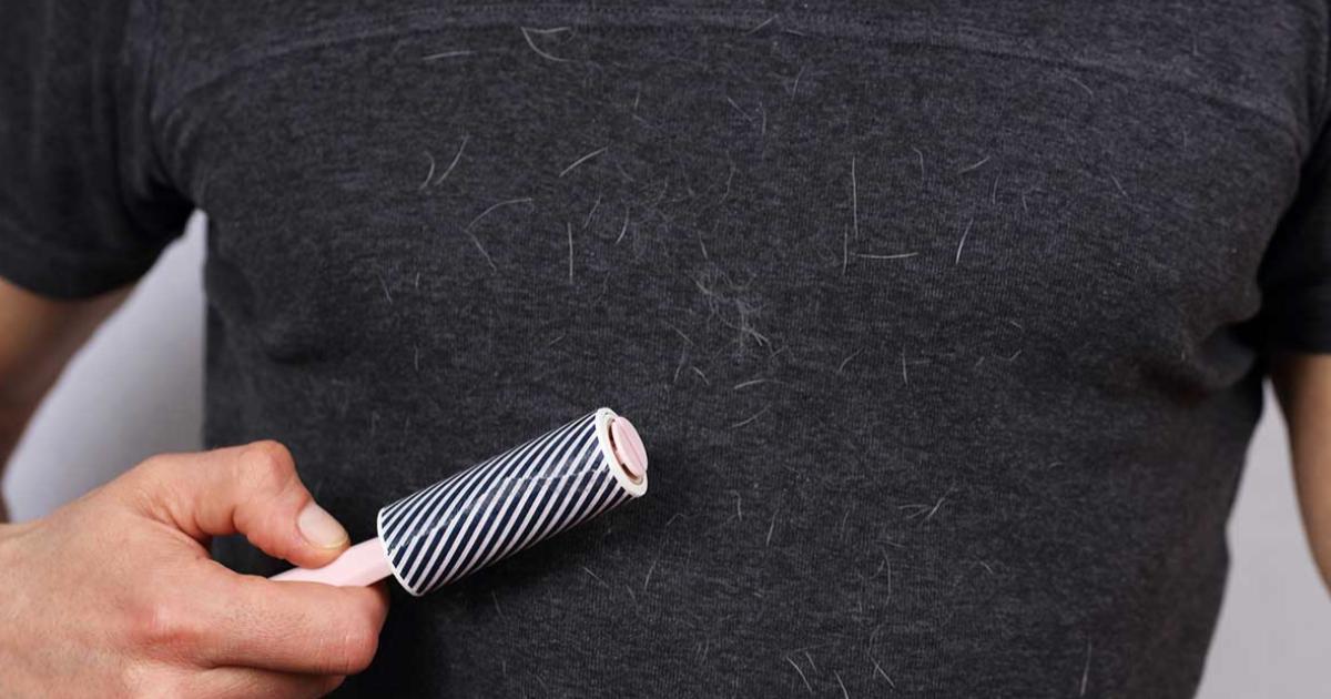 Cómo-quitar-pelos-de-gato-y-de-perro-de-la-ropa-2