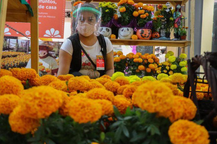 Esta es la temporada donde puedes encontrar este tipo de flores | Foto: SEDEMA